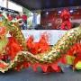 Baile danza del Dragón, año nuevo chino en República Dominicana